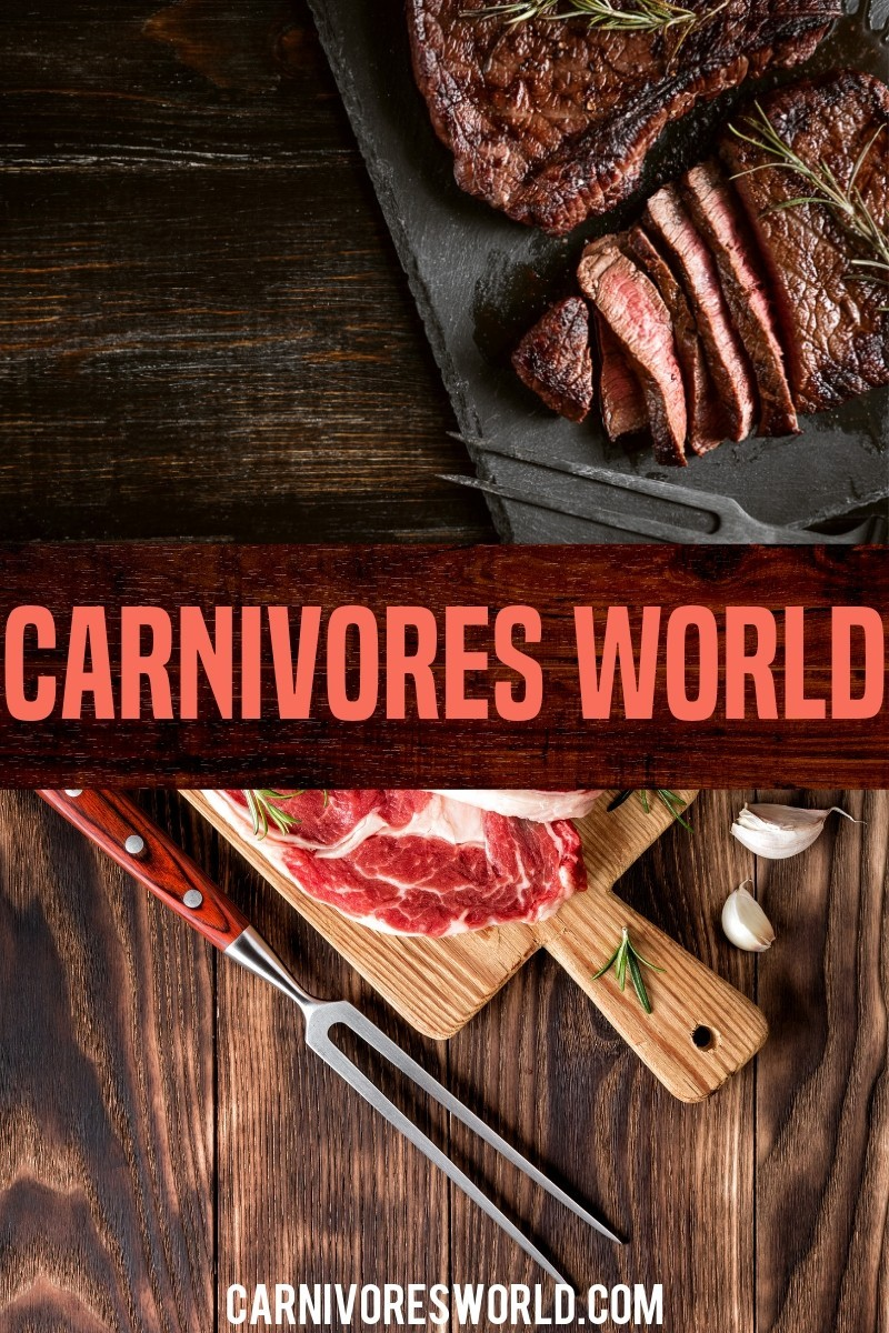 carnivores world lifestyle diet zero carb